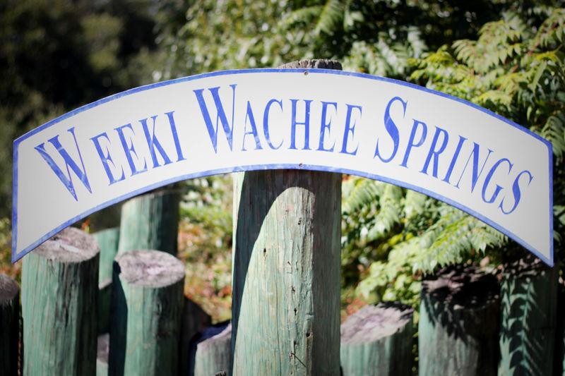Weeki Wachee